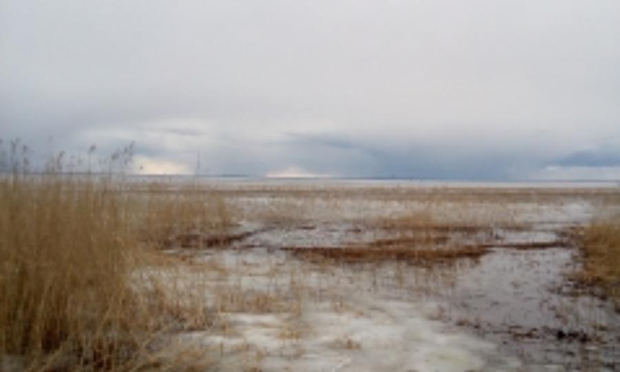 Наозере Лача вКаргопольском районе утонули двое рыбаков